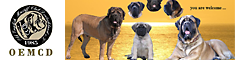 Old English Mastiff Club