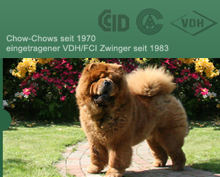 Chow-Chows seit 1970